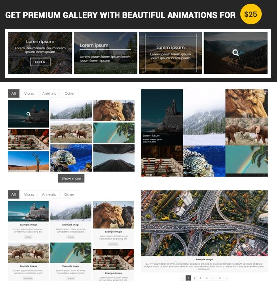 Get premium gallery with beautiful animations